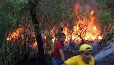 Siirtte 3 gündür süren orman yangını, güçlükle söndürüldü