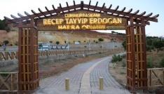 Tuncelide Cumhurbaşkanı Erdoğan Hatıra Ormanı yenilendi