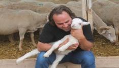 Fransız koyunuyla et verimini 3e katlıyacak