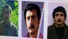 Tuncelide biri turuncu listede 6 terörist öldürüldü