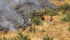 Hizanda orman yangını