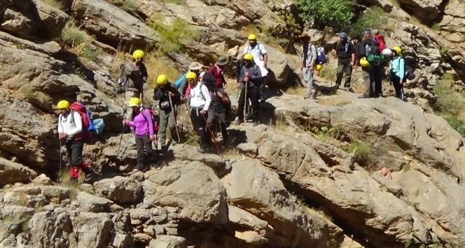 Hakkarili Dağcılardan Sümbül'ün zirvesinde görsel şov