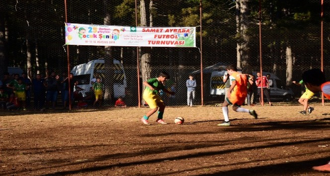 Samet Aybaba Futbol Turnuvası final maçı ile sona erdi
