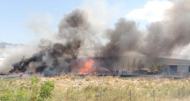 İzmir'deki fabrika alev alev yandı