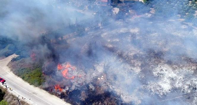Bursadaki orman yangını devam ediyor