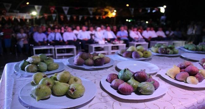 Belen'de incir üreticileri yarıştı