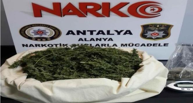 Alanya'da 2 ayrı uyuşturucu operasyonu: 2 gözaltı