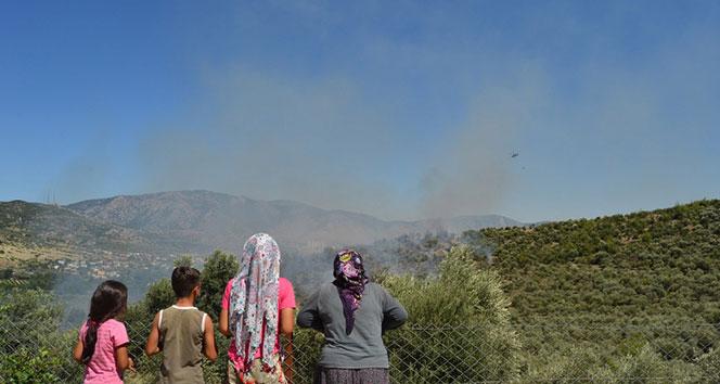 Kozan'da orman yangını...
