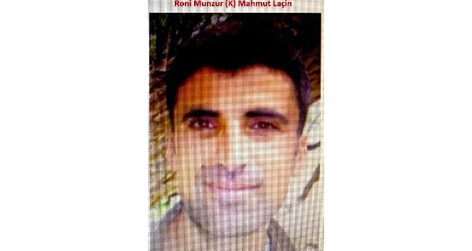 PKKnın Panzer Kemalin yerine geçirdiği o terörist de öldürüldü
