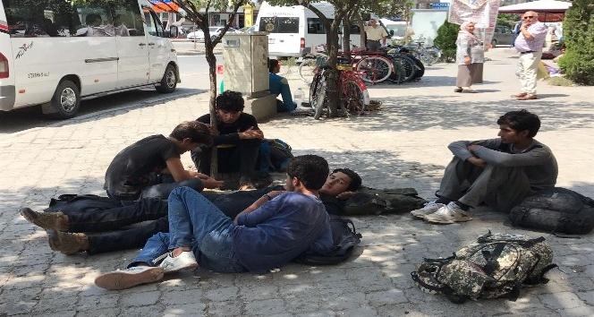 Iğdırda kaçak göçmenler toplandı