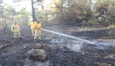 Çanakkalede orman yangını kontrol altında