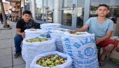 İhtiyaçlarını yerli elma satışıyla karşılıyorlar