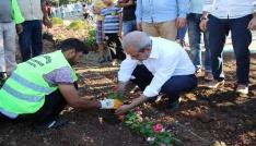 Halilyede parklar çiçeklerle donatılıyor