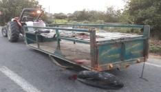 Traktörle kamyon çarpıştı: 1 ölü, 7 yaralı