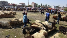 Karsta kurban pazarında bayram yoğunluğu