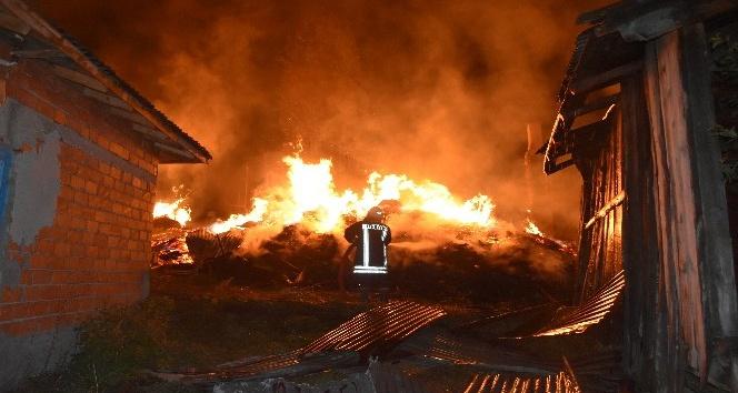 Tosyada çıkan yangında 8 ev tamamen yandı