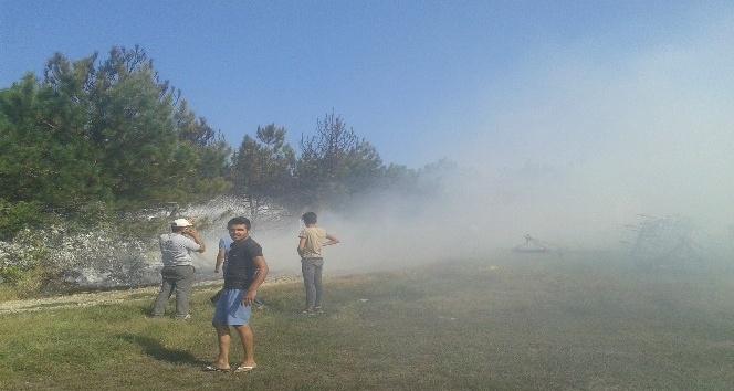 Atatürk Hatıra Ormanında yangın: 400 çam kül oldu