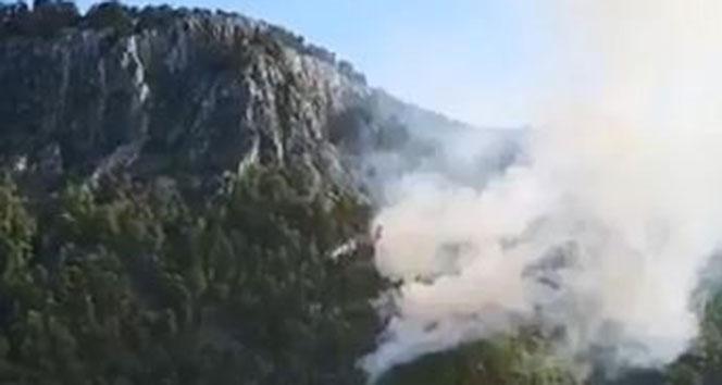 Antalya'da orman yangını...