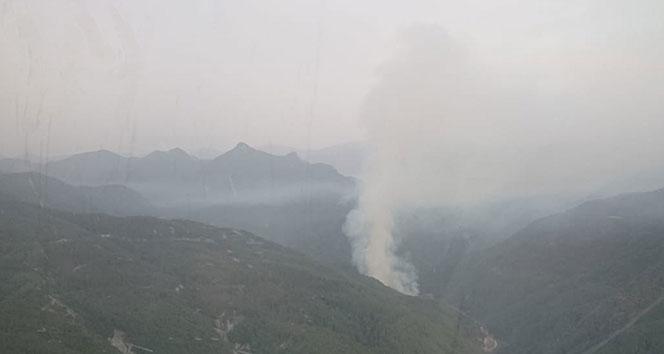 Hatay'da orman yangını..