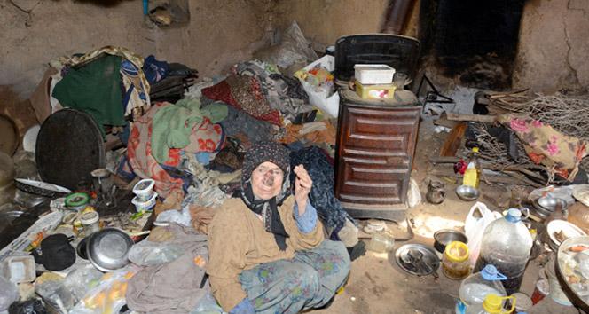 Kedileriyle çöp evde yaşayan yaşlı kadın hastaneye kaldırıldı