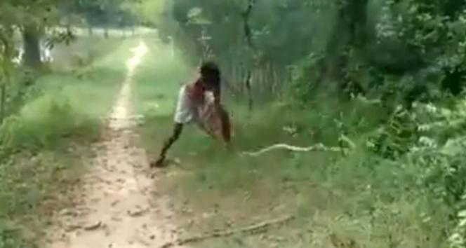 Dev yılanı yerden yere vurdu