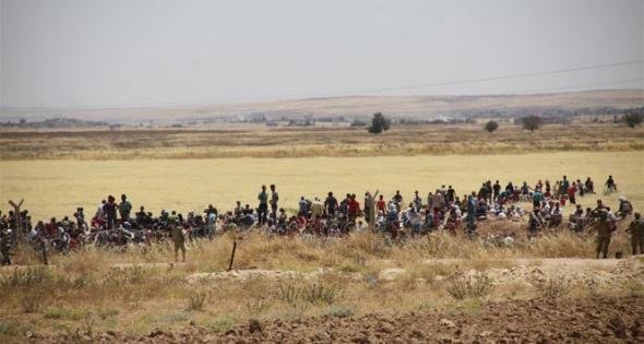 Kobanililer sınıra yığılmaya başladı
