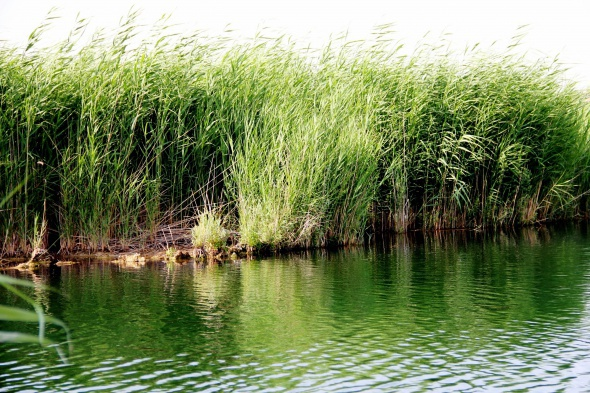 Iğdır'ın saklı güzelliği Karasu görenleri büyülüyor