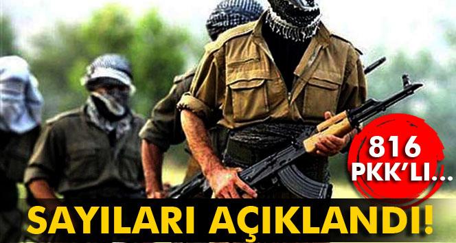 Sayıları açıklandı! 816 PKK'lı...