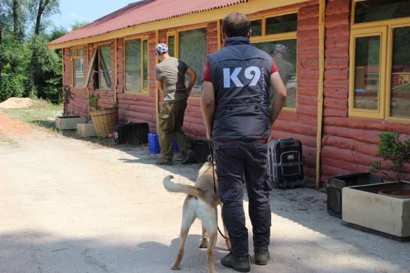 Bomba uzmanı K9 köpekleri hayat kurtarıyor