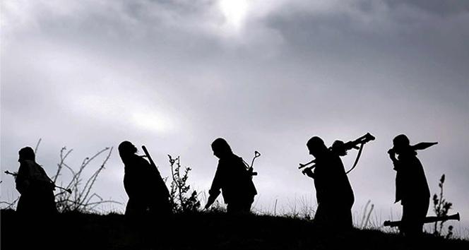 Şırnak'ta 7 PKK'lı...pkk,Şırnak