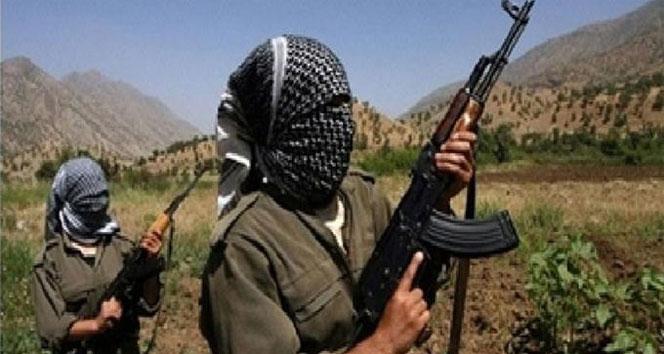7 PKK'lı daha...pkk
