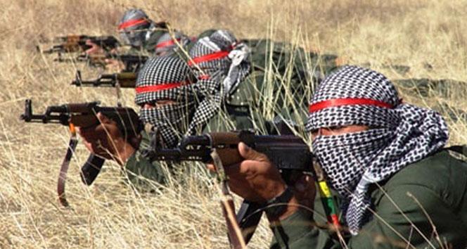 Ağrı'da 7 terörist öldürüldü!