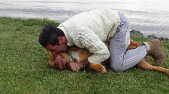Tehlikeli olmadığını göstermek için köpeğini ısırdı!