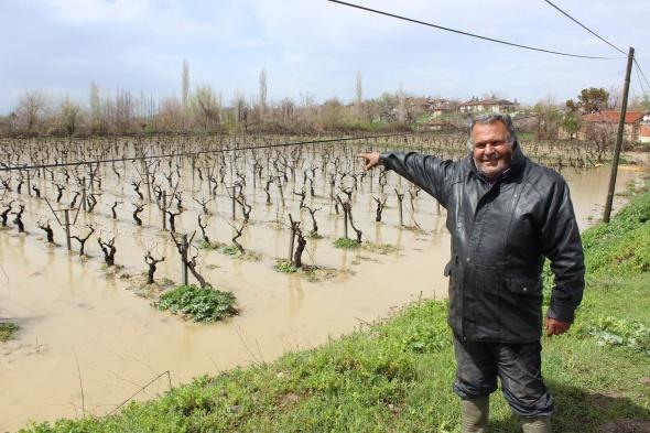 Sel tarım arazilerini su altında bıraktı
