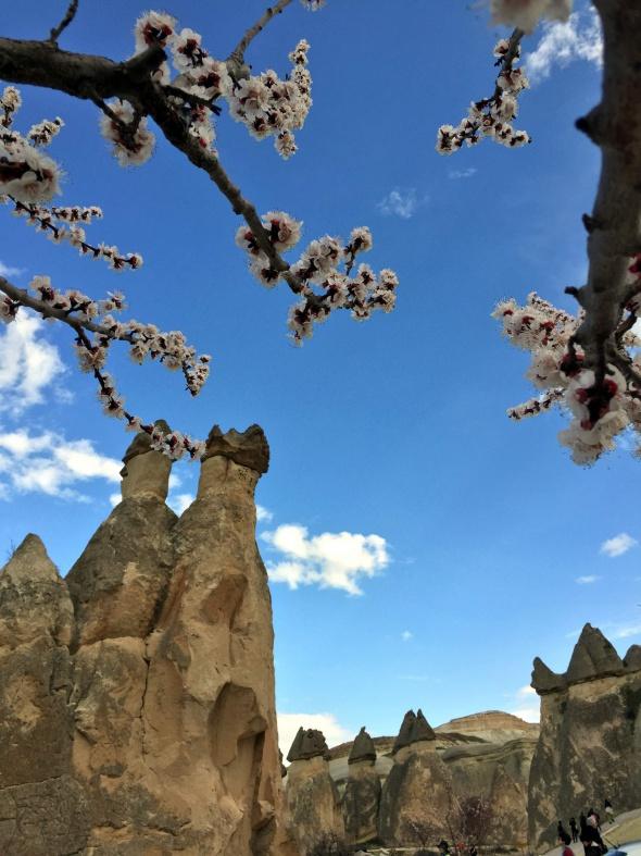 Kapadokya'ya bahar geldi